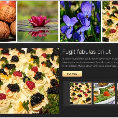 Responsive Portfolio Image Gallery   WordPress Plugin   Free Version