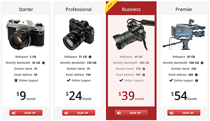 Responsive CSS3 Pricing Table - 3